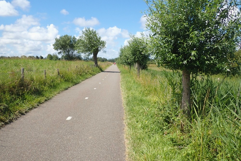 bike line to the nature reserve